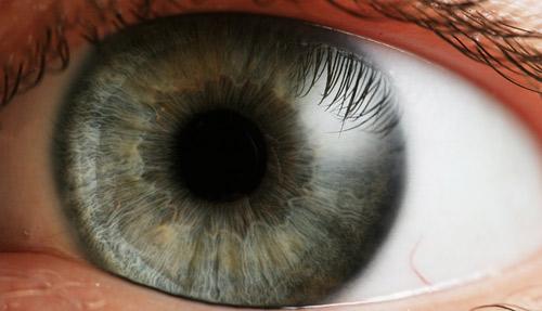 چشم انسان و فریم در ثانیه